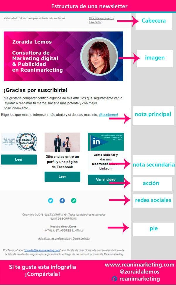 estructura-newslettter-curso-email-marketing